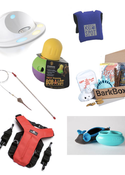 Best Products for Pets [Guest Post]